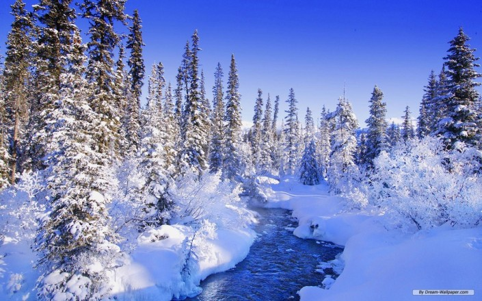 Source: http://www.dream-wallpaper.com/nature-wallpaper/winter-wonderland-10-wallpaper/1280x800/free-wallpaper-16.html