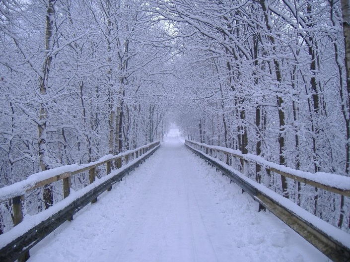 Source: http://www.edwardlifegem.com/2013/12/winter-wonderland.html